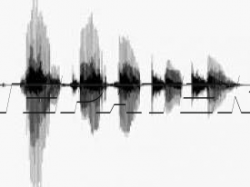 Inter-M Голосов.файл для PAM (IM VF)